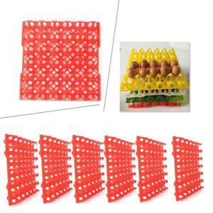 6 Pk Egg Trays For Incubator Storage Holds 30 Poultry Eggs Industry Tool