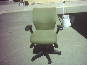 Keilhauer Task Chair With Arms Green Wedeliverlocallyca