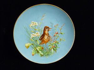 Victorian Master Artist Hand Painted Plate With Baby Sparrow
