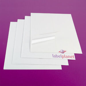 A4 Transparent Labels Clear Laser Printer Waterproof Round Label Planet