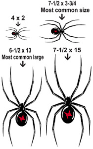 Black Widow Spider Vinyl Graphic Car Decal Sticker 4 Colors 6 Sizes