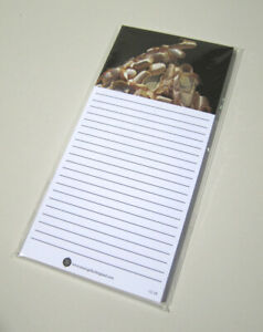 10 Pack White Note Pads Ballet Shoes Music Gift Stationery Made In England