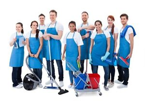 Weclean youshine com Cleaning Service Directory Website