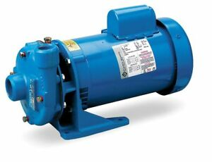 Goulds Water Technology Cast Iron 2 Hp Centrifugal Pump 115 230vac Voltage