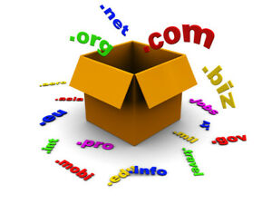 Enviable net Premium Domain One Word Domain Rare Opportunity