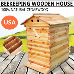 Bee Hive House Starter Kit Wooden Box House For Auto Honey Frames max 7pcs