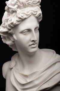 Marble Bust Of Apollo Belvedere Classical Sculpture Art Gift Ornament