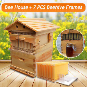 Beehive Wooden Brood Box House 7pcs Upgraded Honey Hive Frames Beekeeping Sk