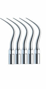 30 Dental Ultrasonic Perio Scaler Tips P4 Fit Ems Woodpecker Scaling Handpiece
