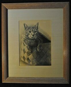 Antique Engraving By John A Lowell Co Cat In A Basket Copyright 1893 Framed