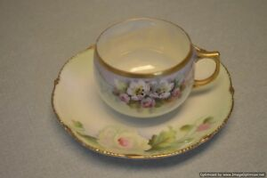 Bavarian Hand Painted Cup And Saucer With Flowers And Gold Edging