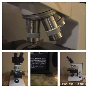 Leitz Laborlux D Compound Laboratory Microscope With 2x 4x 40x 100x Objectives