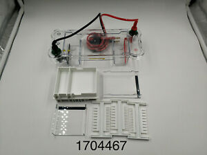 Oem Replacement For Bio rad Mini sub Cell Gt Horizontal Electrophoresis 1704467