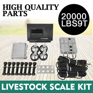 20000lbs Livestock Scale Kit For Animals Waterproof Platform Scales Stable