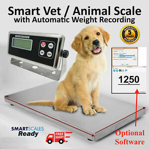 Livestock Scale Hog Scale Dog Scale Sheep Scale Goat Scale Pig Scale 725 Lb
