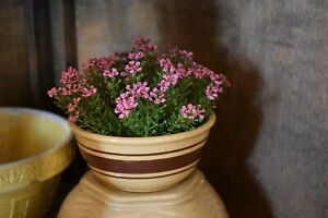 New Primitive Farmhouse Country Pink Astilbe Half Sphere Bowl Filler Home Decor
