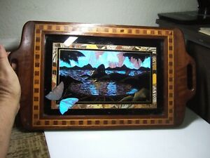 Vintage Inlay Wood Iridescent Butterfly Wing Serving Tray Estate