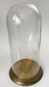 Antique Victorian 14 5 Hand Blown Glass Dome Display Cover With Brass Base