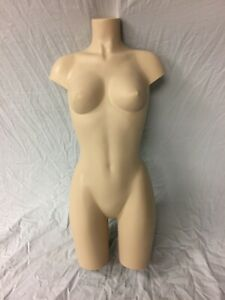 Realistic mannequins 2 Partial Torsos Varied Color Size With With Extras