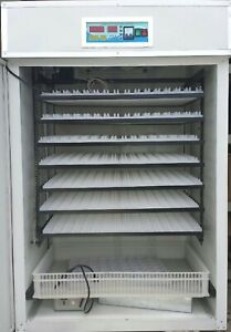 Full Automatic Incubator For 1200 Chicken Eggs Commercial Capacity
