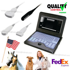 Usa Fedex Vet Veterinary Ultrasound Scanner Portable Laptop Machine Animal Use