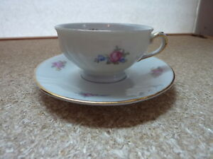 Vintage Royal Heidelberg Germany Cup And Saucer Set Small Size