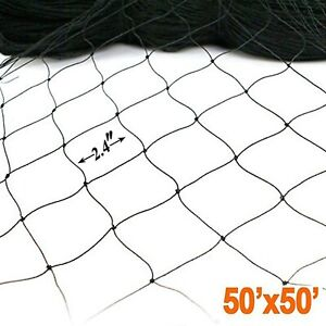 50 X 50 Net Netting For Bird Poultry Aviary Game Pens New 2 4 Square Mesh