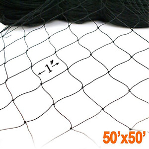 Zl 11 50 X 50 Netting For Bird Poultry Aviary Game Pens New 1 Squa Black