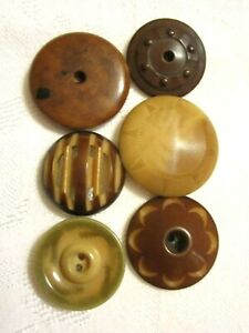 6 Antique 1900 S Vintage Vegetable Ivory Nut Clothing Buttons All Unusual