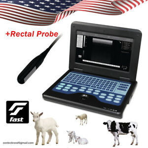 Horse cow sheep Veterinary Ultrasound Scanner Laptop Medical Device 7 5mh Rectal