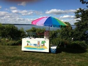 Beautiful 2000 Cambro 2 5 X 6 Shaved Ice Concession Cart Snowball Stand For
