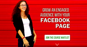 Facebook Page Strategies X course Moolah Fast Delivery