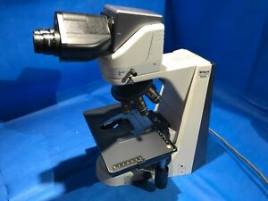 Nikon Microscope Eclipse 50i With 10x Objective For Pathology 100x Oil Tilting