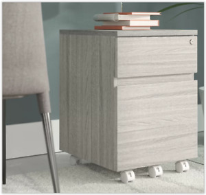 Filing Cabinet Rolling 2 Drawer Carrio