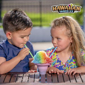 Hawaiian Shaved Ice Syrup 6 Pack Pints Snow Cone Flavors W fast Shipping