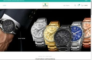 Established Profitable Watch Store Turnkey Dropship Website Business For Sale