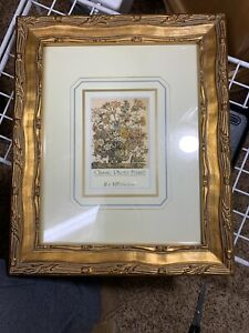Very Pretty Gold Ornate 8 X 10 Picture Frame Used