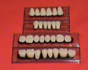 1 New Complete Set Of Three layer Dental Acrylic Resin Teeth Shade A3