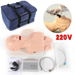 Intubation Manikin Study Teaching Model Airway Management Trainer Pvc Simulator