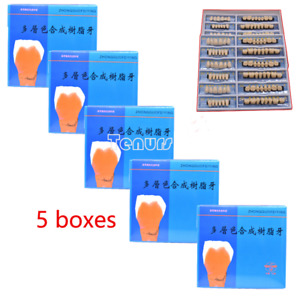 5boxes Acrylic Resin Denture Dental Teeth Upper Lower Shade 23 A2 Oral Care