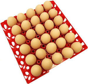 72 Rite Farm Products 30 Egg Plastic Chicken Trays Shipping Carton Poultry Flat