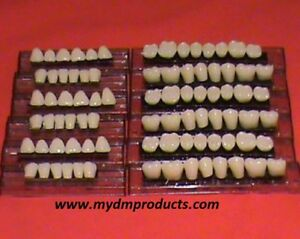 Acrylic Teeth 100 Denture Set