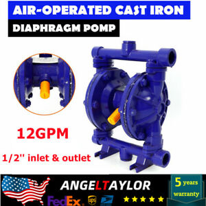 Air operated Double Diaphragm Pump Inlet Outlet Petroleum Fluids 12gpm 1 2