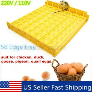 56 Eggs Automatic Egg Incubator Turner Tray Poutry Chicken With 110v Motor Jj