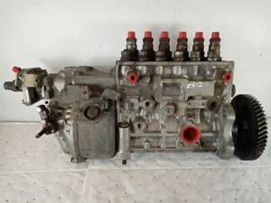 1987 Ford 6 6 Diesel Bosch Fuel Injection Pump 6p110a720rs 7783884