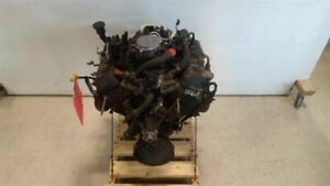 Engine 6 262 4 3l From 1997 Chevy S10 Pickup 7761745
