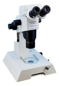 Olympus Szx9 Stereo Microscope On Szx illb200 Stand