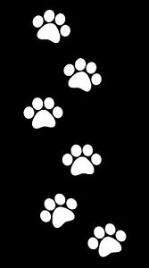 This Is A Set Of 6 Dog Paw Print Stickers Glossy White Great For Car