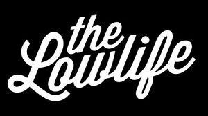 The Low Life Sticker Decal Stance Nation Import Tuner Vinyl Illmotion Jdm Racing