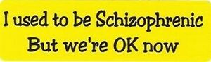 Motorcycle Sticker For Helmets Or Toolbox 806 I Used To Be Schizophrenic But We